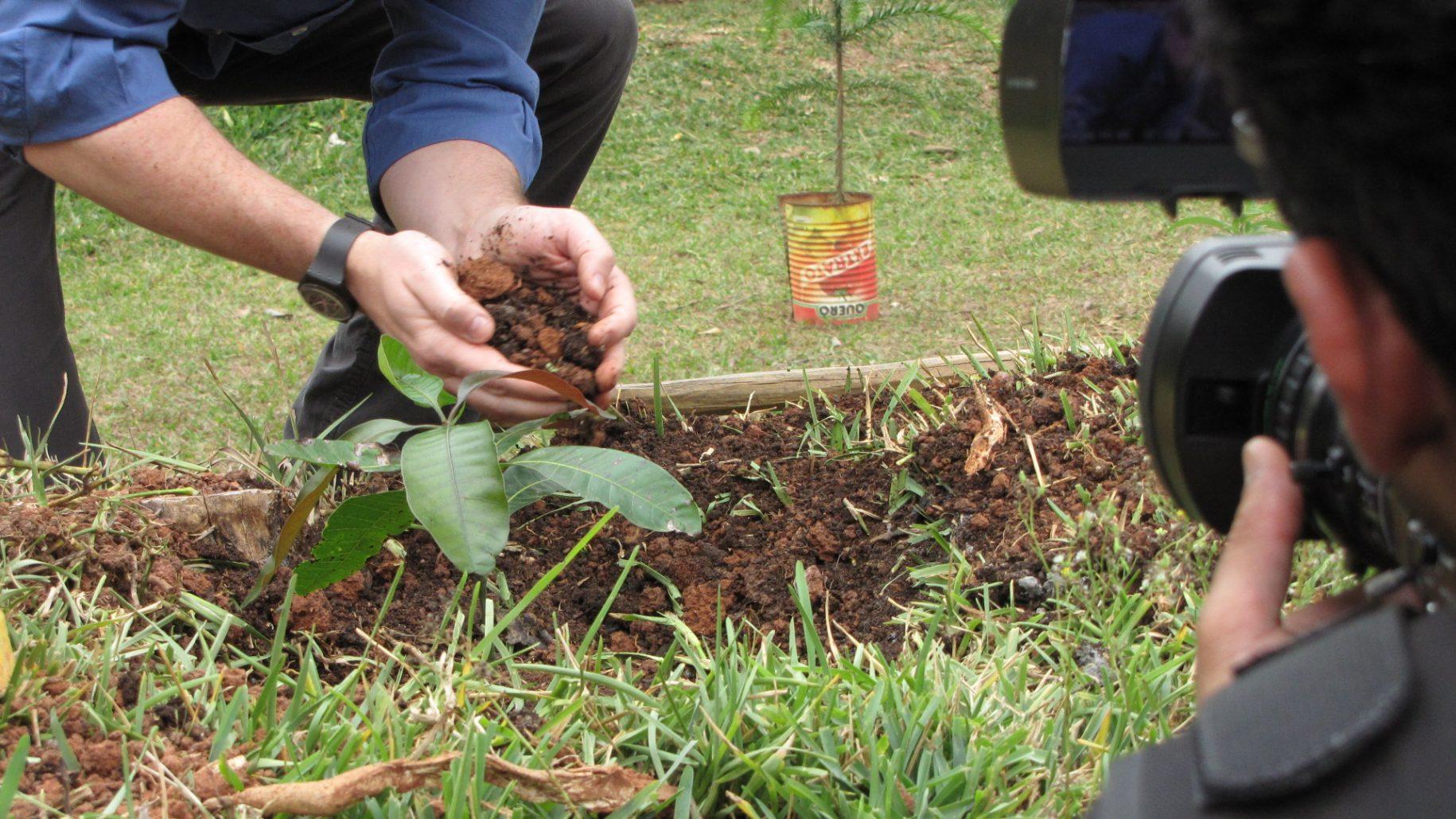 Pessoa plantando uma árvore no hotel fazenda campo dos sonhos, pelo programa plante ou adote uma árvore