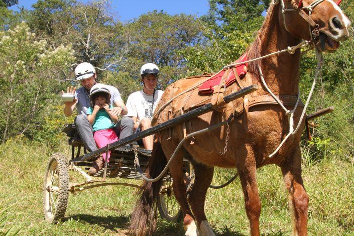 Adultos e crianças fazendo o passeio a charrete do hotel fazenda parque dos sonhos