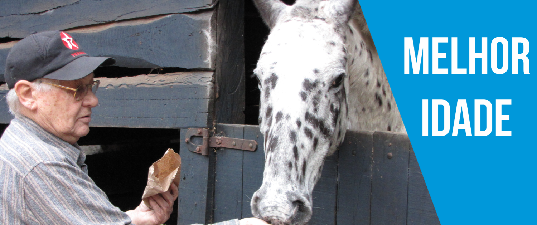Senhor da melhor idade deixando o cavalo comer ração na propia mão